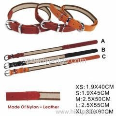 China Longlasting High Quality Dog Collar on sale