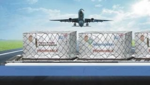 China Air Cargo Cover on sale