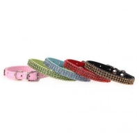 China Wonpet Five Colors Rhinestone Dog Collar on sale