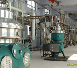 China Oil refinery 50TPD physical continuous palm oil refinery plant on sale