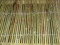 China Amarus Bamboo Fence on sale