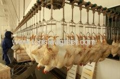 China Chicken Processing Equipment Live Birds Transport and Reception Manufacturer & Supplier on sale