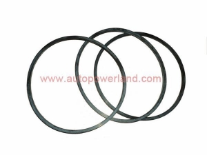 China Cummins Parts Product name:Cummins NT855 Seal Ring 173368 on sale
