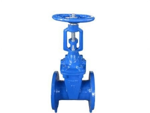 China BS Soft Seal Gate Valve on sale