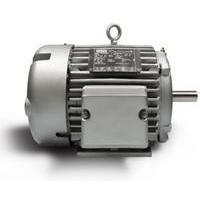 Permanent Magnet AC Motors