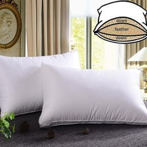 China Luxury Down Pillow on sale