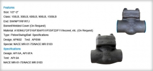China API 602 - Check Valve Series - 800LB Check ValveBack on sale