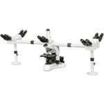 China Biological Microscopes N-510 on sale