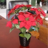 China Flower and bonsai artificial plants, 45cm potted poinsettia, christmas decor on sale