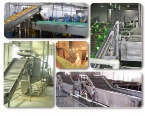 China IQF Fruit & Vegetable Processing Plant on sale