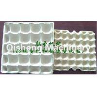 Paper Tray 16pcs egg tray,Quail egg tray