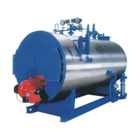 WNS fuel gas (oil) steam boiler
