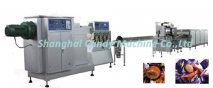 China Candy Process Machine T400 soft candy die forming line on sale