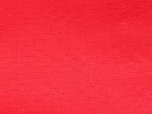 China Nylon Taffeta Series Nylon rip stop SP-N022 on sale