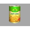 China Fresh foods Canned Baby Corn for sale