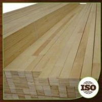 China Eucalyptus And Pine Lvl& Lvb on sale