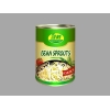 China Fresh foods Canned Bean Sprouts for sale
