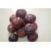 China Fresh plum for sale