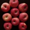 China Chinese Fresh Red Juicy Fuji Apple for export/import for sale