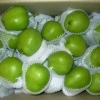 China crispy pear early su pear green pear for sale