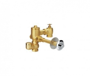 China Concealed W.C. flush valve with vacuum breakerFH 9215 on sale
