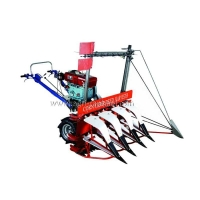 China Corn Harvester on sale