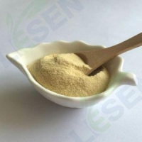 China Fruit AND Vegetable Product Freeze Dried Kiwifruit Powder on sale