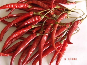 China dry chilli on sale
