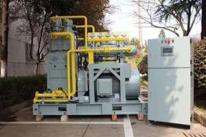 China Souair Gas compressor Natural Gas Compressor on sale