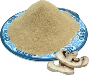 China Champignon (Agaricus Bisporus) powder on sale