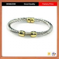 Promotion Popular Element Metal Astrological Bangle