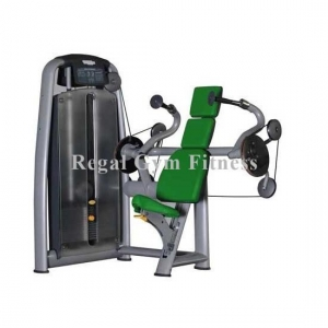 China Luxury Quality Triceps Extension Equipment Gym Arm Machines (RT011) on sale