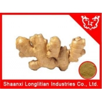 Anti-Cancer China Best Ginger extract