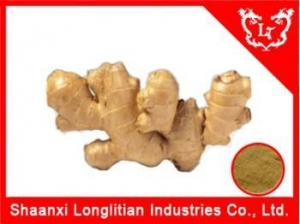 China Anti-Cancer China Best Ginger extract on sale