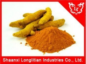 China Loosing Weight Agents Curcumin Supplier in China on sale