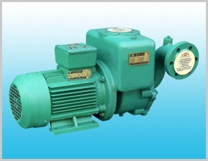 China CWX series self-priming vortex pump on sale