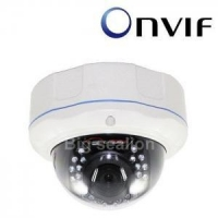 IR 1080P Camera Vandal-proof P2P ONVIF 2.0 IP CCTV