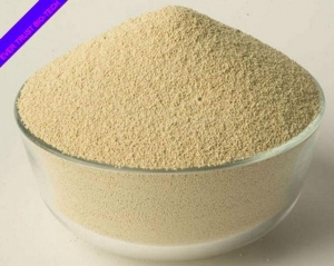 China FEED & FEED ADDITIVES Soybean meal on sale