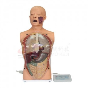 China Advanced Transparent Gastric Lavage Model on sale
