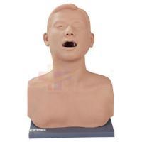 Otolaryngology Vocal Cords Tumors Examination Model