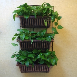 China Garden Tools Vertical Wall planter on sale