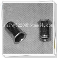 stainless steel pop rivets nut