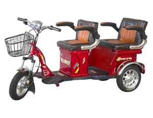 China Electric Tricycle Dynabike TRIBE T1 Elder E-Tricycle on sale