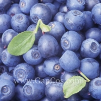 China Blue Berry Extract on sale