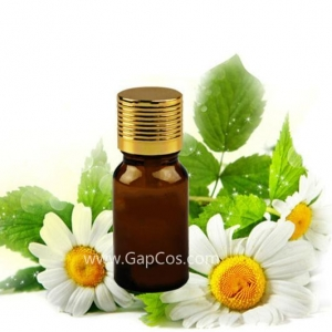 China High Quality Best Price 100% Natural Chamomile Essential Oil on sale