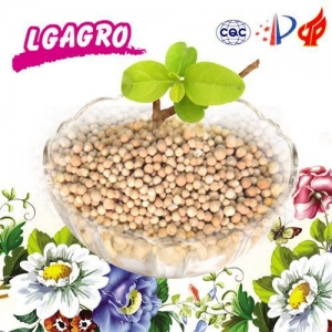 China Slow Release Fertilizer Overview 20-5-8, 18-6-12, 14-14-14 on sale
