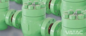 China API 6A Check Valve & Plug Valve on sale