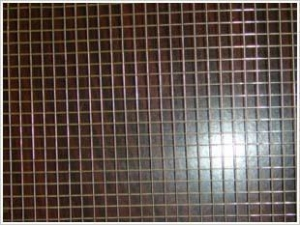 China Galvanized welded wire mesh on sale