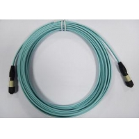 24core OM3 OM4 MTP Fiber Patch Cord , MPO Trunk Cable Female Connector