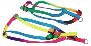 China Rainbow Color for Step-in Dog Harness on sale